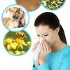 Как вывести аллергены из организма и очистить кровь