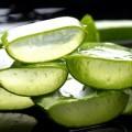 Лечебные свойства и рецепты применения сока алоэ (столетника) от прыщей