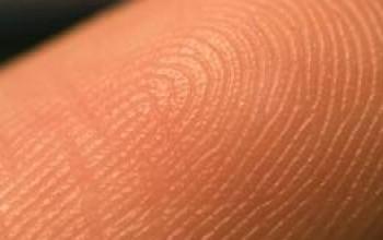Защитная функция кожи